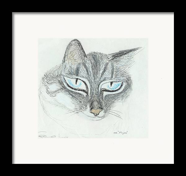 Cat Framed Print featuring the drawing All Eyes by Ingrid Szabo