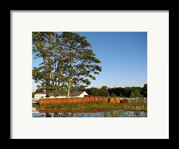 Landscape Framed Print featuring the photograph All In A Row by Todd A Blanchard