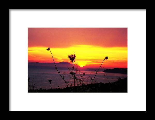 Framed Print featuring the photograph All Most Night by Jacqueline Doulis