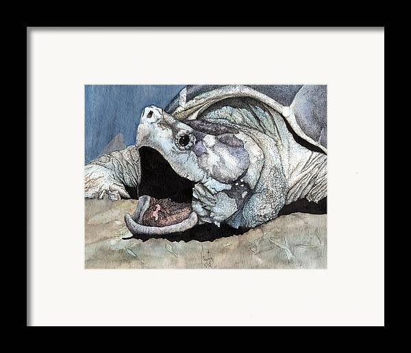 Reptile Turtles Alligator Snapper Turtle Art Snapping Turtle Framed Print featuring the painting Alligator Snapping Turtle by Preston Shupp