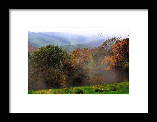 Trees Framed Print featuring the photograph Along The Brp by Joan Bertucci