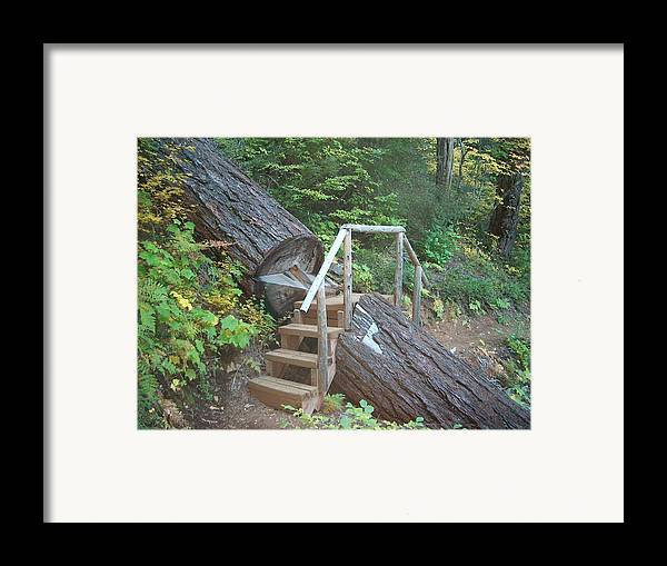 Hiking Trail Bend Oregon Walking Framed Print featuring the photograph Along The Trail by Janet Hall