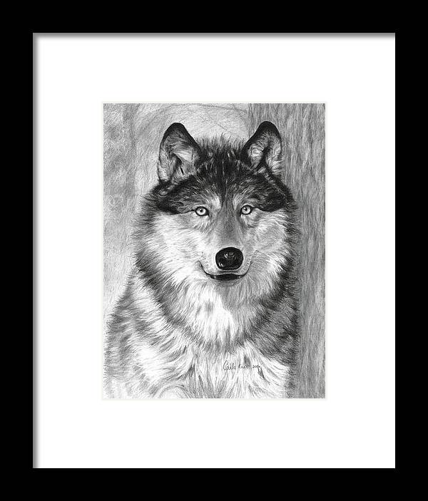 Wolf Framed Print featuring the drawing Alpha by Carla Kurt