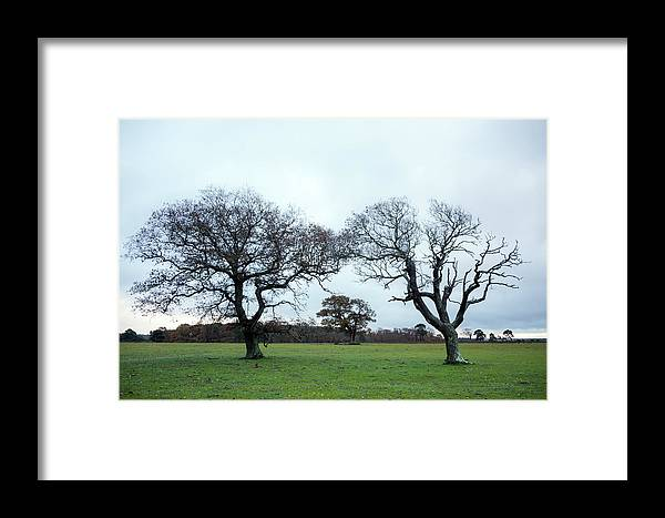 Svetlana Sewell Framed Print featuring the photograph Always Together by Svetlana Sewell