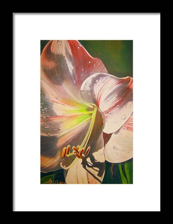 Flowers Framed Print featuring the painting Amarylis by Tara Milliken
