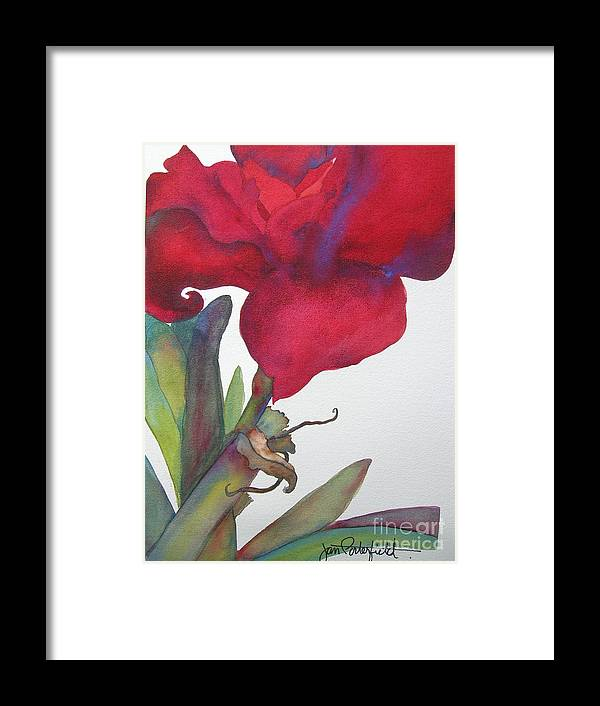 Amaryllis Framed Print featuring the painting Amaryllis 2 by Jeff Friedman