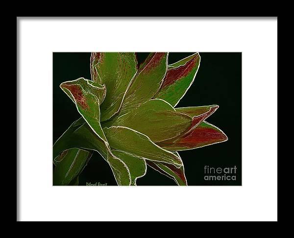 Amaryllis Flower Framed Print featuring the photograph Amaryllis Art by Deborah Benoit