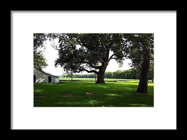 Barn Framed Print featuring the photograph Amazing Farm Yeard by Ami Brown
