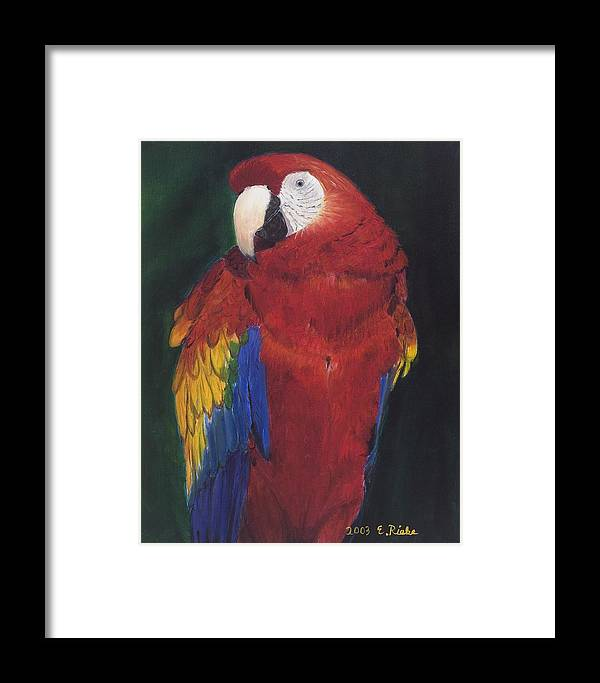 Parrow Framed Print featuring the painting Amazonian Rainbow by Elizabeth Rieke Hefley
