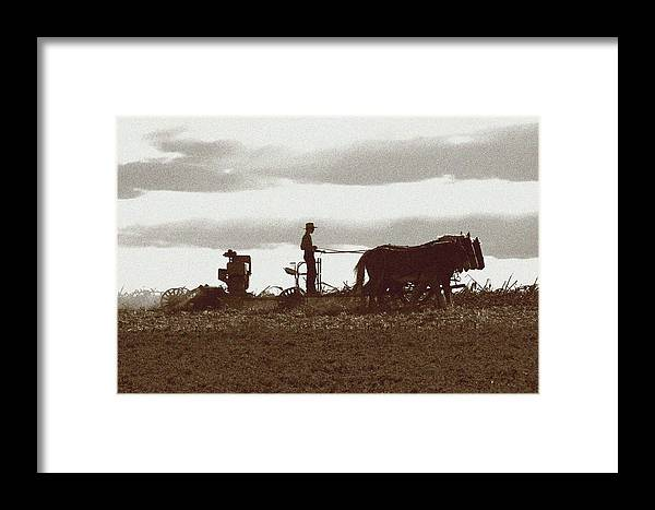Amish Framed Print featuring the photograph Amish Farmer 2 by Lou Ford