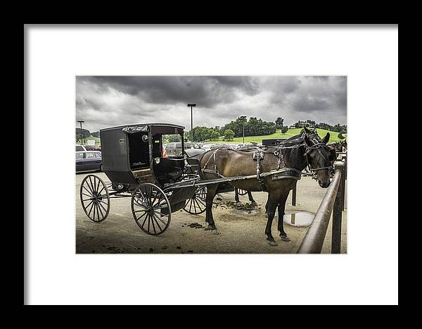 Amish Framed Print featuring the photograph Amish Horse And Buggy by Steven R Breininger