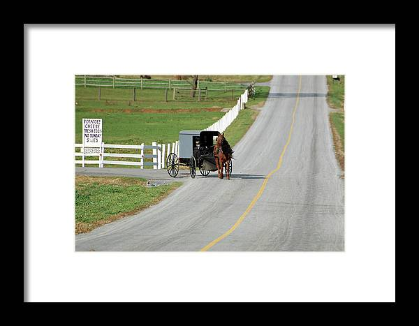 Amish Framed Print featuring the photograph Amish Life by Joyce Huhra