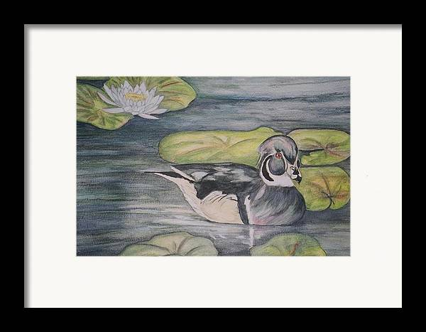 Wood Duck Framed Print featuring the painting Among The Lillypads by Debra Sandstrom