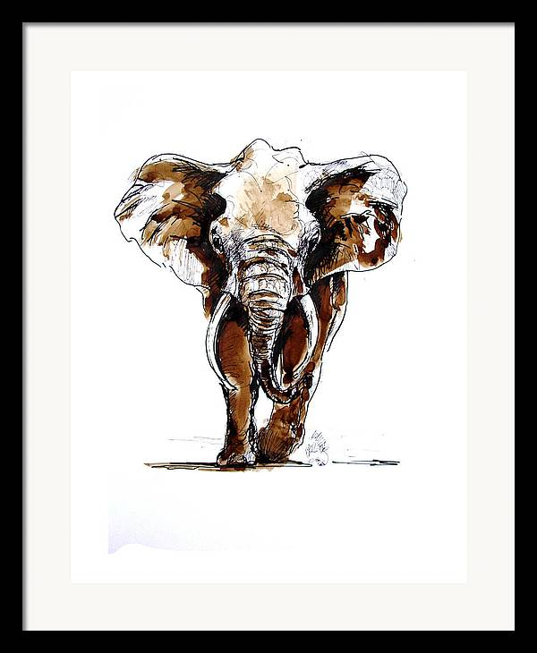Wildlife Framed Print featuring the drawing Amy Grown by Paul Miller