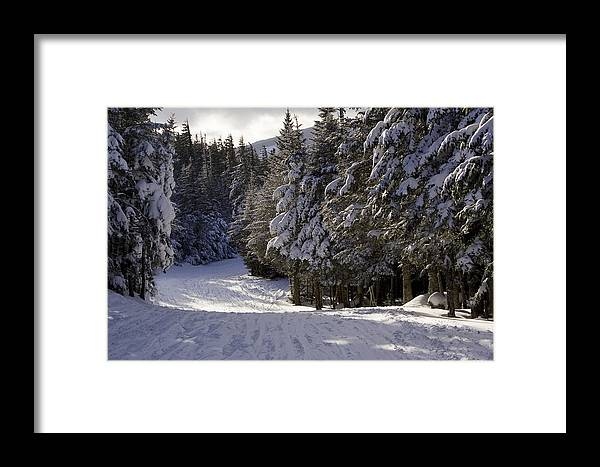 Scenic Views Framed Print featuring the photograph An Alpine Ski Trail On Wildcat Mountain by Tim Laman