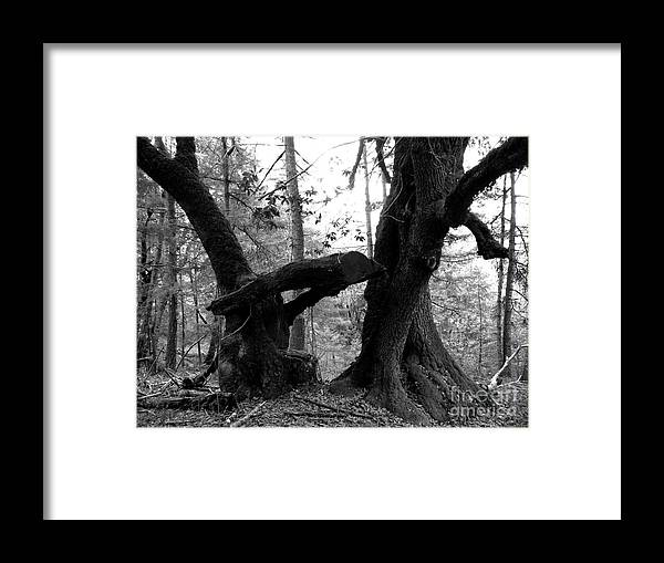 Black And White Framed Print featuring the photograph An Old Game Of Freeze Tag by JoAnn SkyWatcher