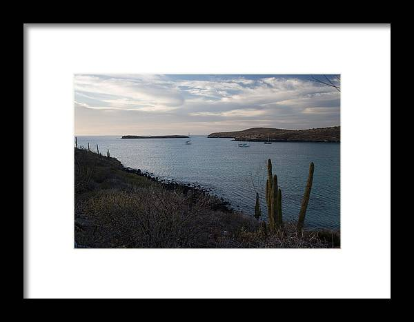 Pacific Framed Print featuring the photograph Anchorage by Richard Steinberger