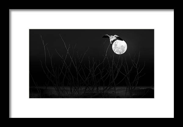 Hawk Framed Print featuring the digital art Ancient Moon by Skye Art