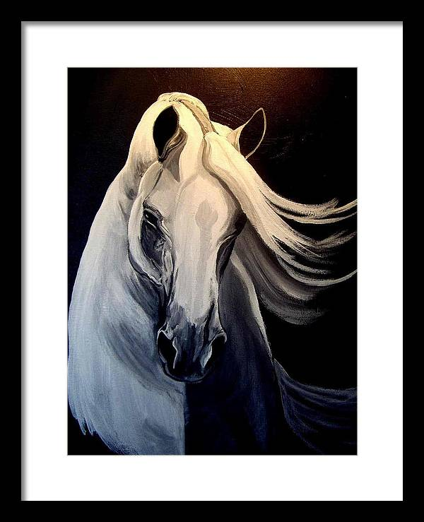 Euine Framed Print featuring the painting Andalusian Stallion by Glenda Smith