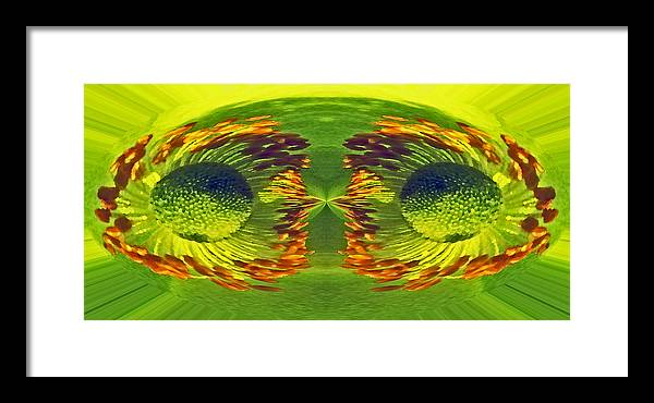 Digital Art Framed Print featuring the digital art Anemone Eyes. by Terence Davis