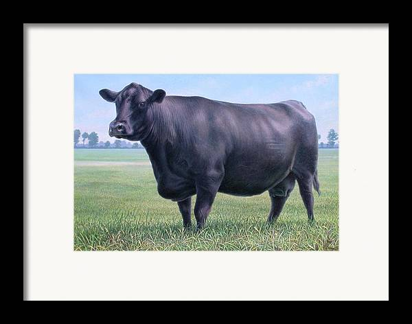 Cow Framed Print featuring the painting Angus Cow 981 2007 by Hans Droog