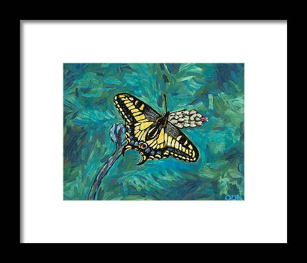 Framed Print featuring the painting Anise Swallowtail by Steve Lawton
