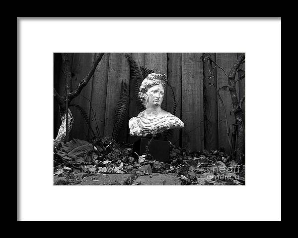 Apollo Framed Print featuring the photograph Apollo In The Backyard by David Lee Thompson
