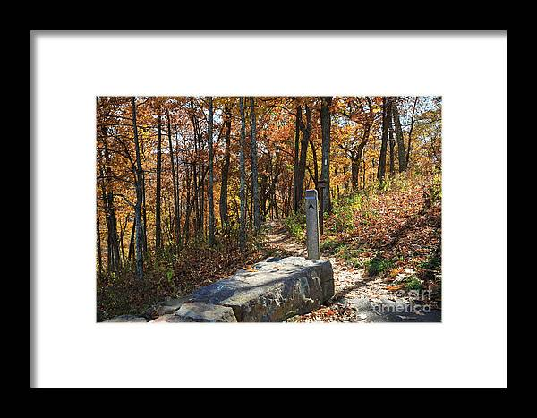 Appalachian Trail Framed Print featuring the photograph Appalachian Trail In Shenandoah National Park by Louise Heusinkveld