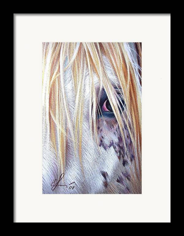 Appaloosa Framed Print featuring the drawing Appaloosa by Elena Kolotusha