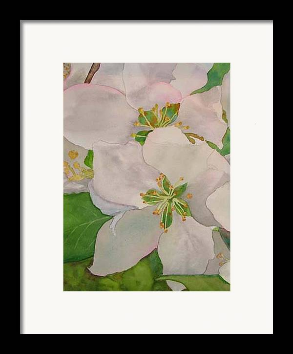 Apple Blossoms Framed Print featuring the painting Apple Blossoms by Sharon E Allen
