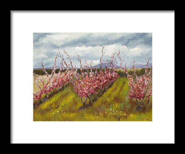 Apple Tree Framed Print featuring the painting Apple Hill Springtime by Brenda Williams