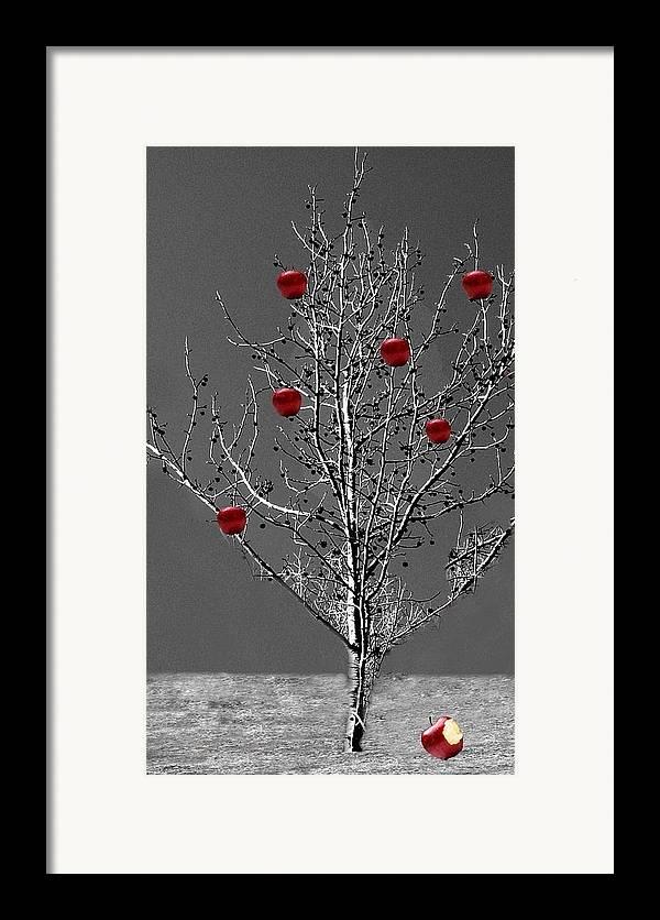 Tree Framed Print featuring the digital art Apple Tree by Kenna Westerman