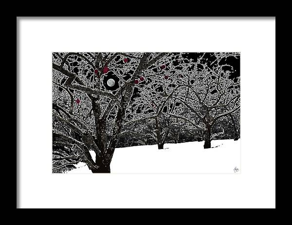 Winter Framed Print featuring the photograph Apples Trees In Winter by Wayne King