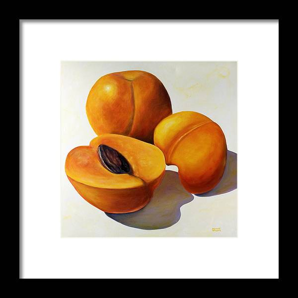 Apricots Framed Print featuring the painting Apricots by Shannon Grissom
