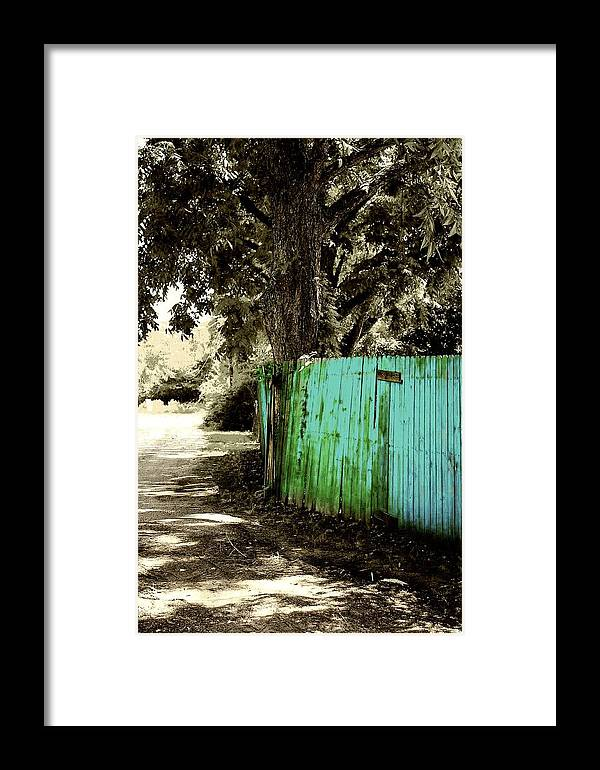 Tree Framed Print featuring the photograph Aqua Fence by Jill Tennison
