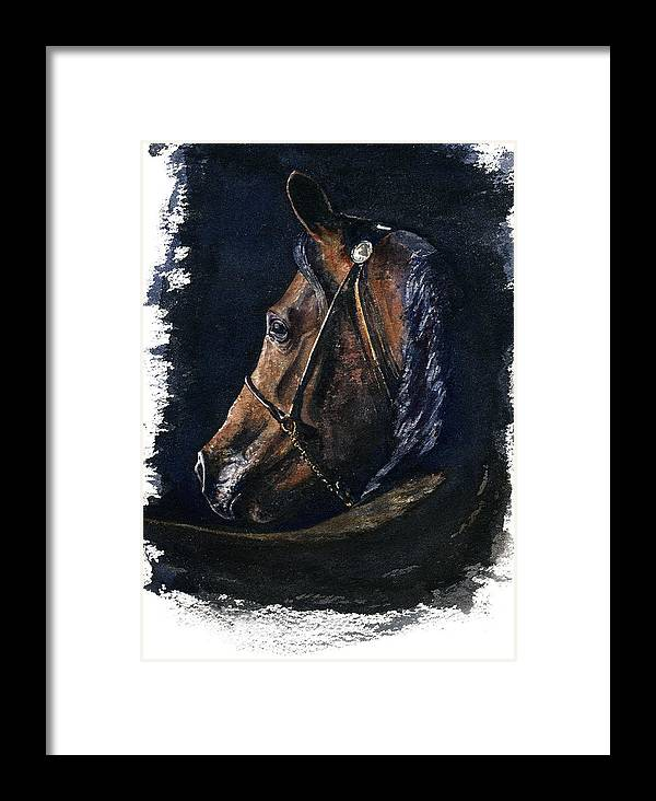 Horse Framed Print featuring the painting Arabian by John D Benson