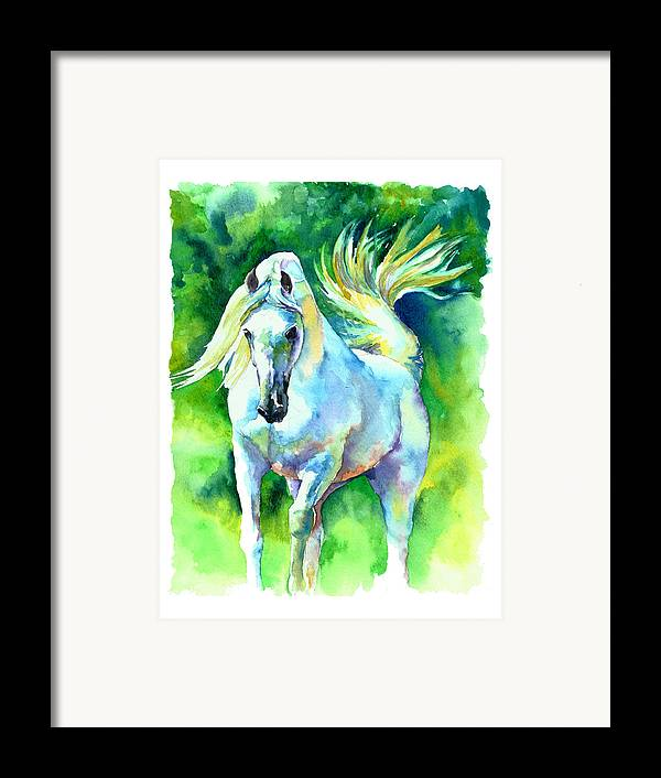 Arabian Horse Framed Print featuring the painting Arabian Stallion by Christy Freeman