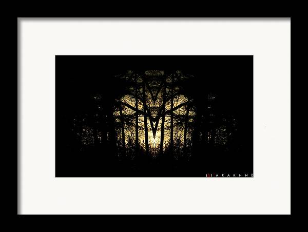 Spider Framed Print featuring the photograph Arakhne by Jonathan Ellis Keys