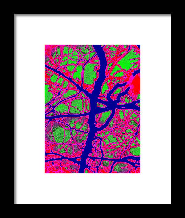 Abstract Framed Print featuring the digital art Arbor Mist 2 by Tim Allen