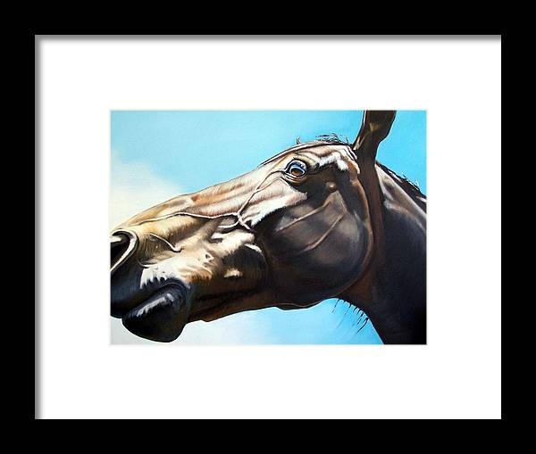 Horse Framed Print featuring the painting Arc by Steve Messenger
