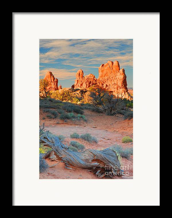 Arches Framed Print featuring the photograph Arches Vista by Dennis Hammer