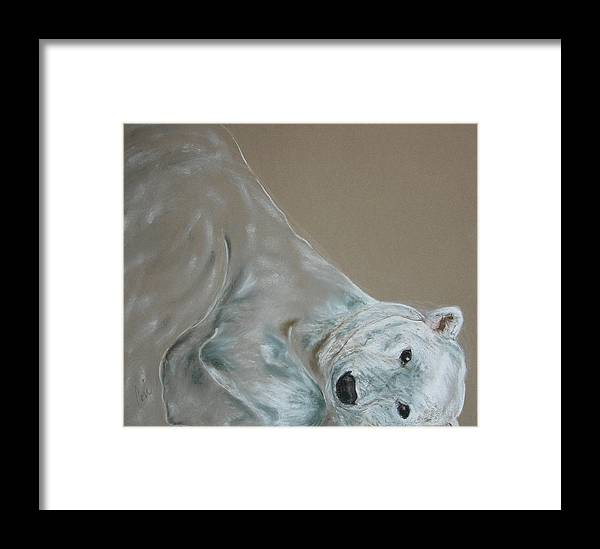 Polar Bear Framed Print featuring the drawing Arctic Frolic by Cori Solomon