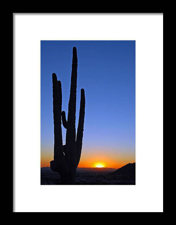 Cactus Sunset Framed Print featuring the photograph Arizona Sunset by Jon Daly