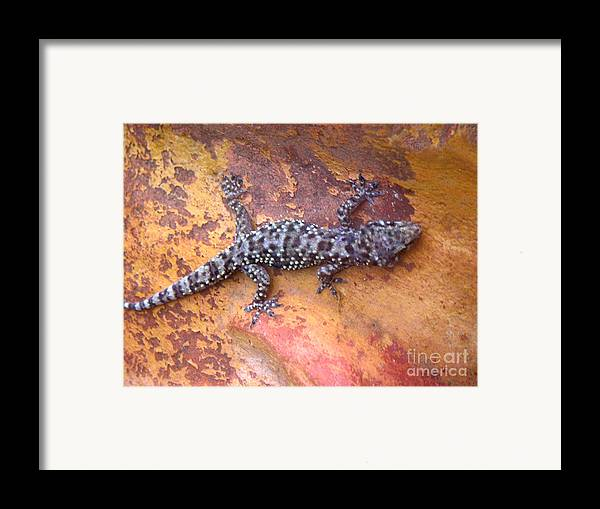 Nature Framed Print featuring the photograph Art Among The Ruins - Five by Lucyna A M Green