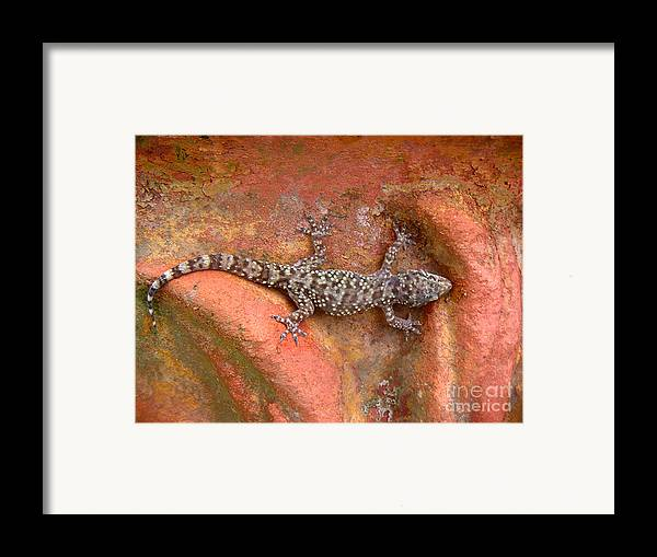 Nature Framed Print featuring the photograph Art Among The Ruins - Six by Lucyna A M Green