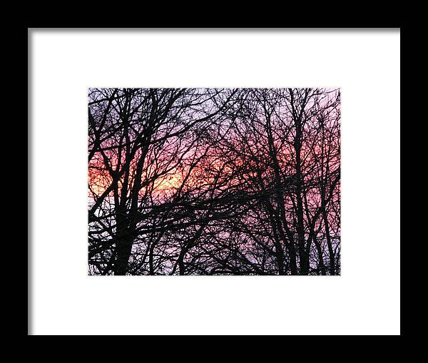 Winter Trees Framed Print featuring the photograph Art Inspired Nature by Maria Joy