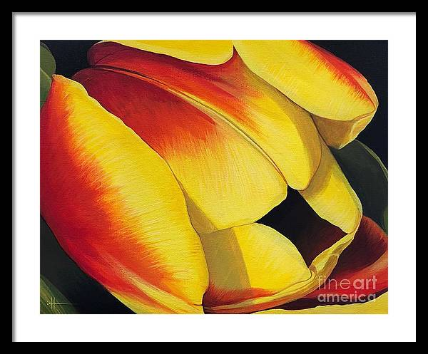 Tulip Framed Print featuring the painting Art of Color by Hunter Jay
