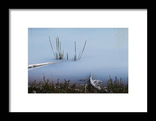 Chad Davis Framed Print featuring the photograph Artist Palette Of Blue by Chad Davis