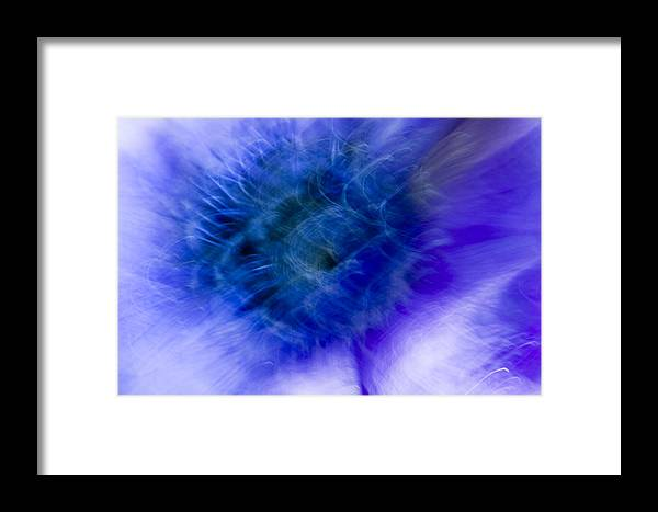 Flower Framed Print featuring the photograph Artistic Flower by Silke Magino