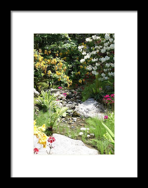 Nature Framed Print featuring the photograph Asian Rock Garden by Sonja Anderson